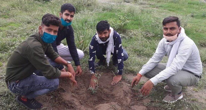 सरदार भगत सिंह राजकीय स्नातकोत्तर कॉलेज में एबीवीपी ने किया पौधरोपण