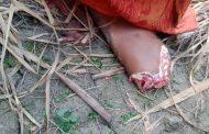 तेंदुआ खा गया सात साल की बच्ची का पैर, सिर और आधा धड़, देखिए क्या कर डाला हाल